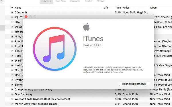 iTunes giúp ngăn chặn tình trạng tải nhạc bất hợp pháp, đồng thời đáp ứng nhu cầu mua các bài hát đơn lẻ so với việc phải mua cả album